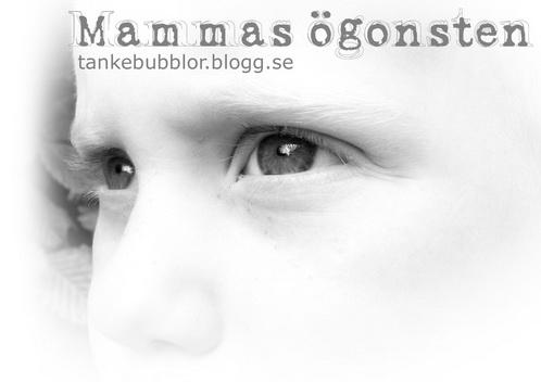 ögonsten
