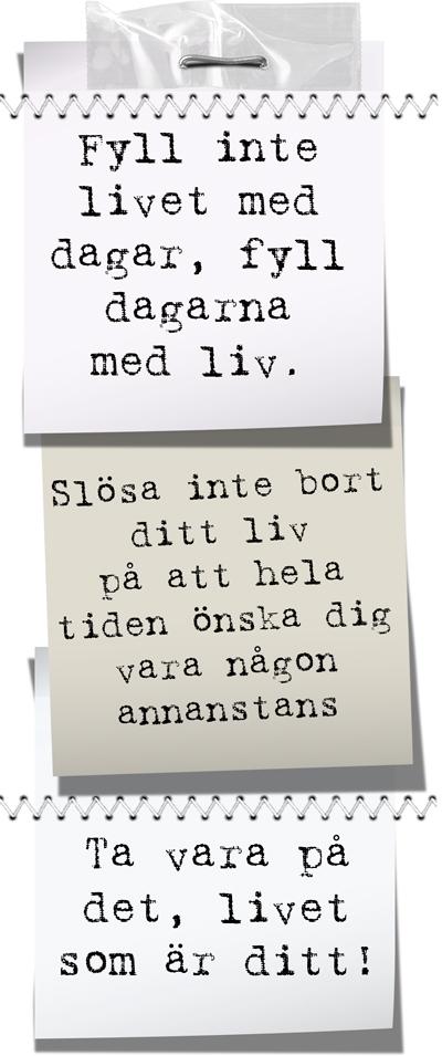 Ta vara på ditt liv!