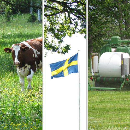 ko flagga jordbruk