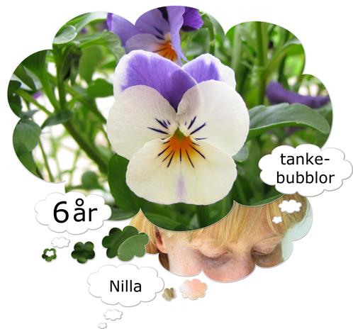 tankebubblor