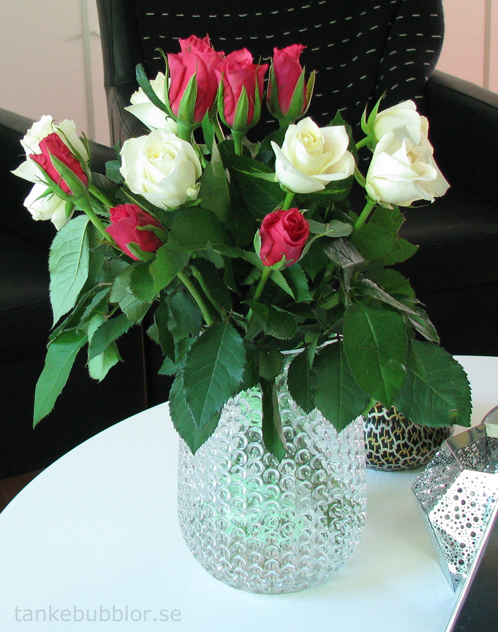tankebubblor rosor