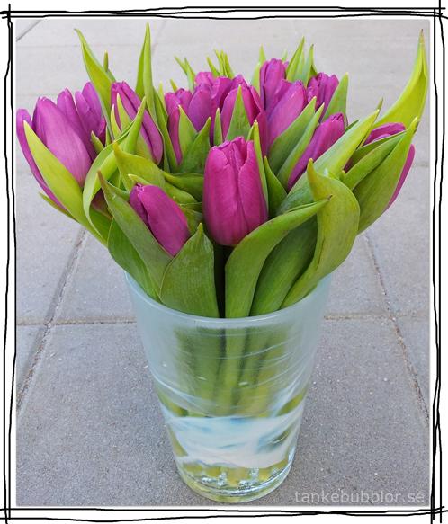 trevlighelg tulpaner