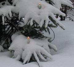 snötäckt utegran