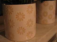 kruka crysant