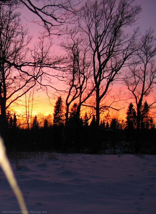 solnedgång i januari